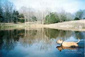 Bu at the pond