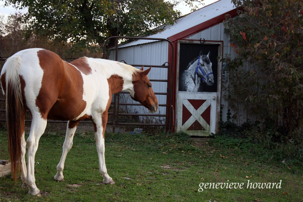 Miko the horse next to the painted barn door horse