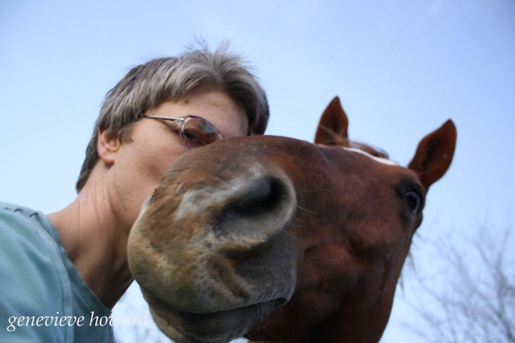 Horsey Selfie
