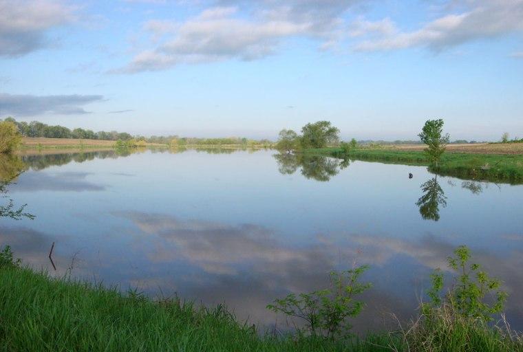 Lake in summer morning